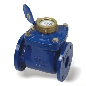 Removeable Cold or Hot Water Meter Lxlc-50-200mm