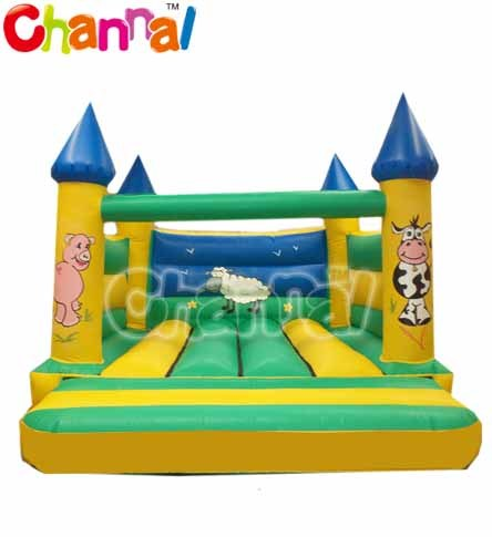 Amusement Park Inflatable Bouncer Castle Vb-036 pictures & photos