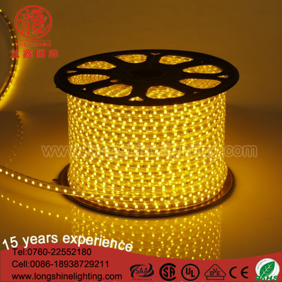 IP 44 Warm White RGB PVC Flex Copper LED Light Strip SMD 5050 2835 Ce&RoHS pictures & photos