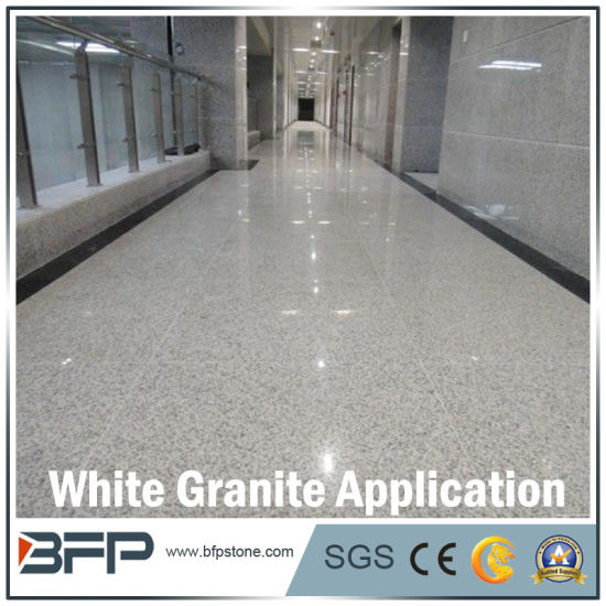 Polished Chinese Stone Granite Floor Tile For Interior Flooringwall