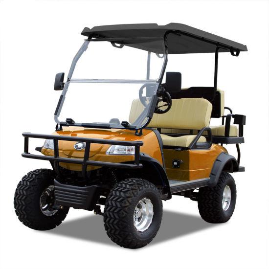 Electric Buggy Golf Cart Hunting Car (DEL2022D2Z, orange) Blackroof