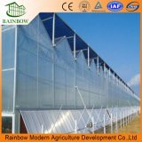 Hot Sale PC Sheet Agriculture Greenhouse with Hydroponics Growing System