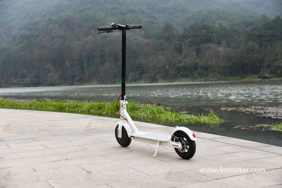 Hot Selling 8.5 Folding Electric Scooter with Best Prices