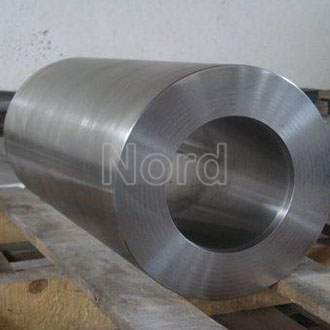 Shaft Forging Parts (NORD-F12)