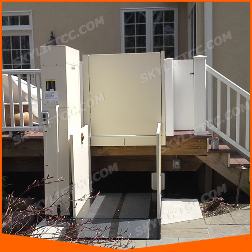 3m China Supplier Electric Vertical Platform Lift for Home Use pictures & photos