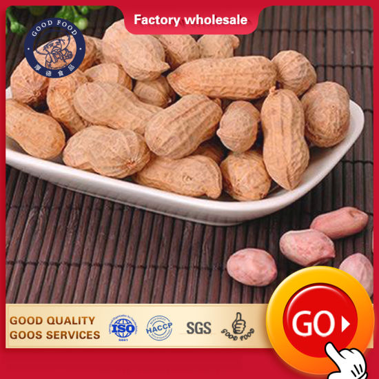 Red Peanut, Blanched Peanut Kernels, Bold Peanutsblanched Peanuts Java Peanuts/ Raw Peanuts Kernel / Raw Peanut in Shell