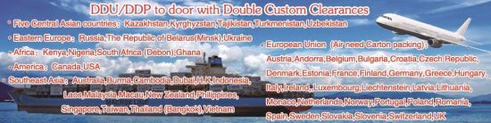 Top Air, Sea and Cargo to Door with Double Clear Customs and Tax. (DDU/DDP) Shipping Company From China to Worldwide pictures & photos