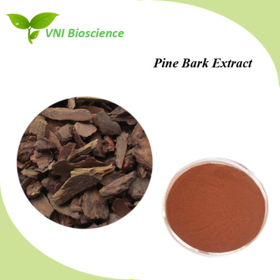 High Quality Pine Bark Plant Extract for Anti-Cancer pictures & photos
