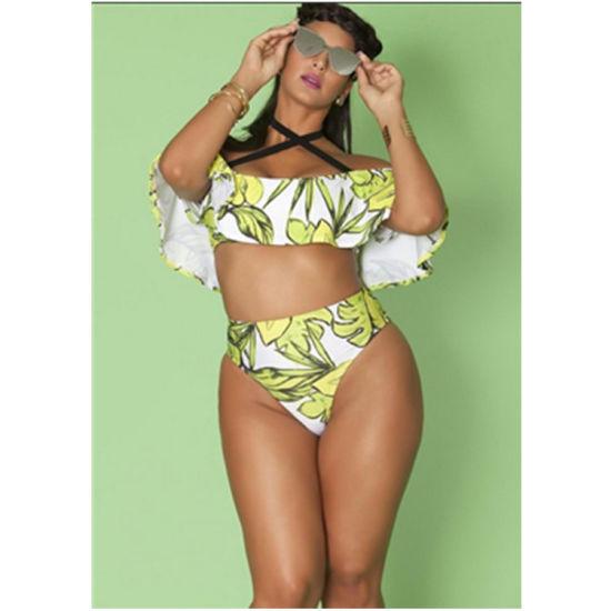 094795dac7079 China Hot Sell Women′s Plus Size Swimwear My1821 - China Bikini ...