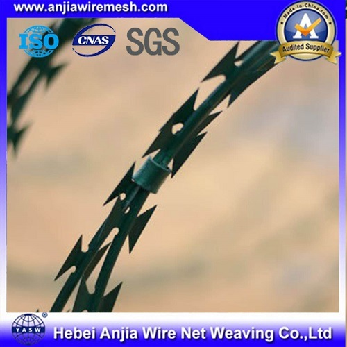 Electro Galvanized Iron Razor Barbed Wire for Security Fencing with ISO9001 pictures & photos