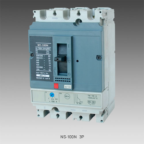Home Protection System Motor Starter Circuit Breakers (NS100) pictures & photos