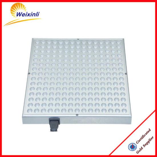 45W Panel Bulb Cheap LED Grow Light for Vegetables