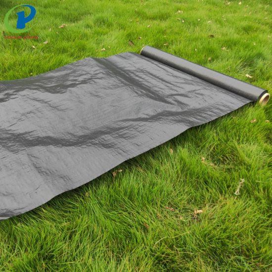 Polypropylene Artificial Ground Cover Woven Landscape Fabric