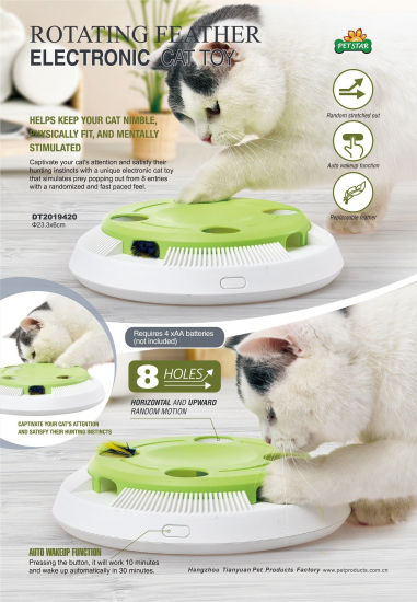 Interactive Cat Pet Toy with Electronic Rotating Feather