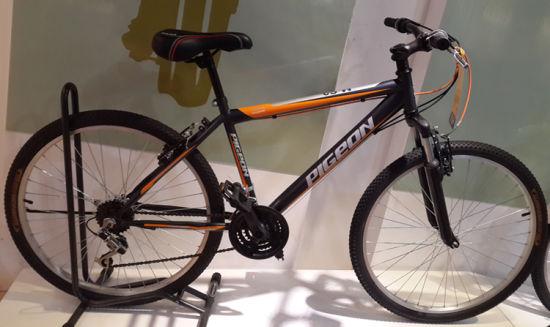 City Bike Suspension MTB Bicycle (FP-MTB-ST013)