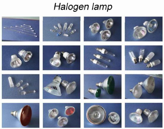 Halogen Lamp (MR16/GU10/JCDR/AR111/PAR LAMP/J-TYPE)