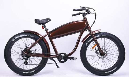 Classic Design Lithium Electric Bicycle for Adults pictures & photos