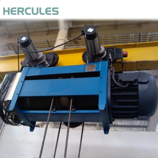 Wire Rope Electric Hoist 20t with JIS pictures & photos