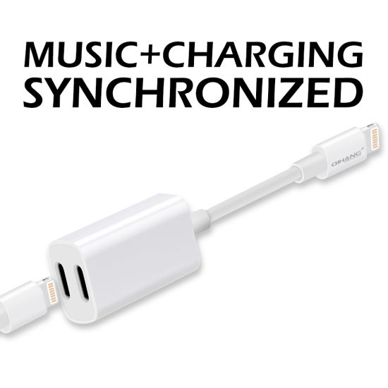 M09 Lightning 2 In 1 Audio Cable Charging Adapter