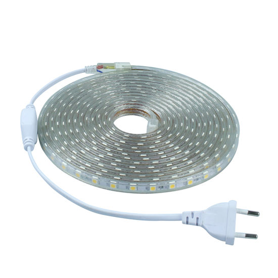SMD 5050 LED Strip 220V Waterproof Flexible LED Tape Light 60 LEDs/M pictures & photos