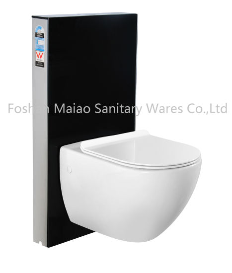 Watermark Tempered Glass Wall-Hung Toilet Cistern with Geberit Flush (6013T-BS)
