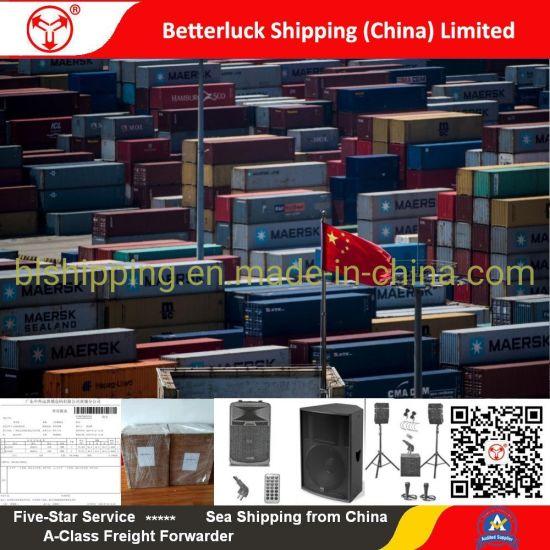 LCL Freight from China/Guangzhou/Shenzhen to Callao/Peru Sea Freight Forwarder