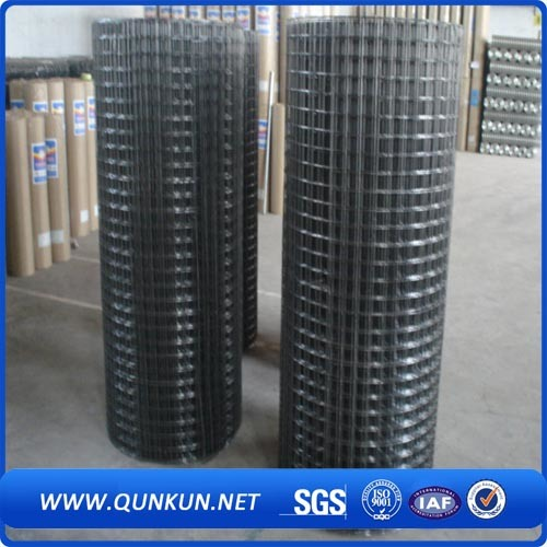 ISO9001 Manufacturer 2X2 Galvanized Welded Wire Mesh for Fence Panel pictures & photos