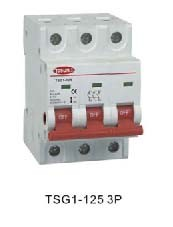 Isolating Switch for Individual Eletric Circuits pictures & photos