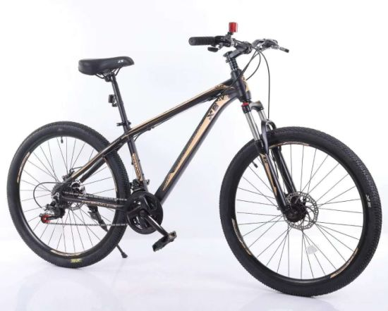 Steel Frame 21 Speed Mountain Bicycle