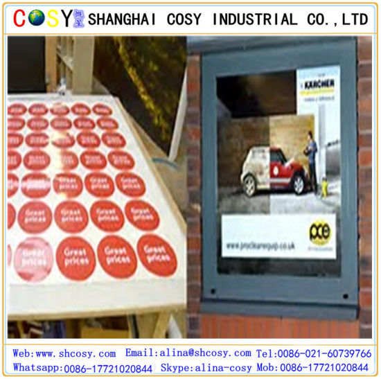 High Quality Vinyl Sticker PVC Film Self Adhesive Digital Printing Vinyl pictures & photos