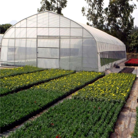 Factory Price High Poly Tunnel Greenhouse for Sale pictures & photos