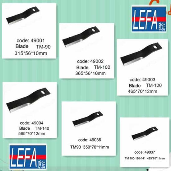 China Heavy Flail Mower Larger Blades Hammers (EFD EFH