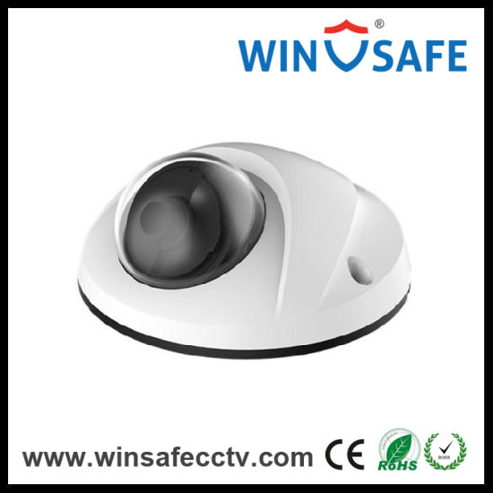 "Surveillance System 1/3"" Sony CCD 700tvl Color IR Dome Camera pictures & photos"