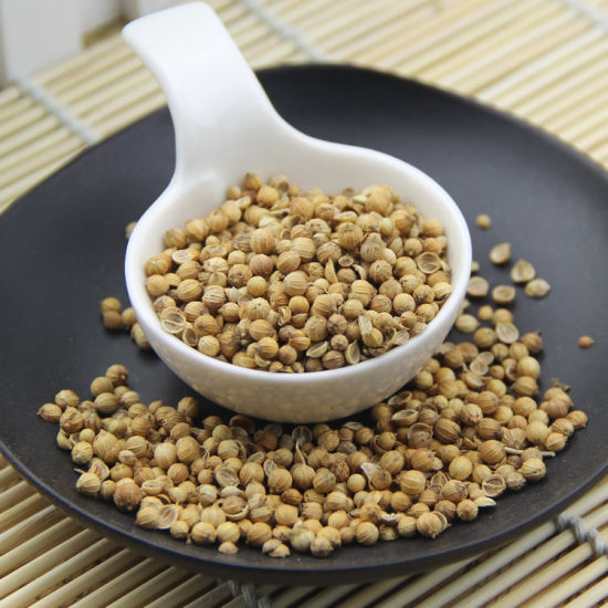 Top Quality and New Crop Coriander Seeds pictures & photos