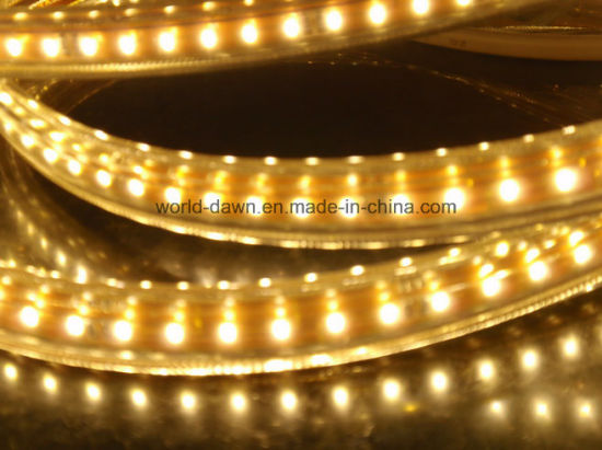 Ce RoHS Super Bright 220V / 127V SMD3014 LED Rope Light (SMD3014-120) pictures & photos
