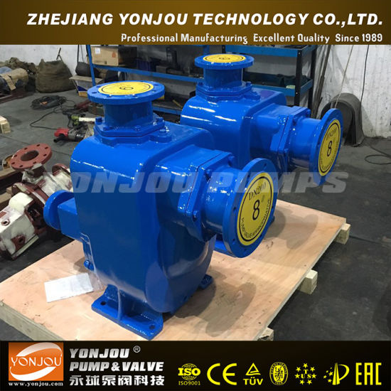 Zw Self-Priming Sewage Pump pictures & photos