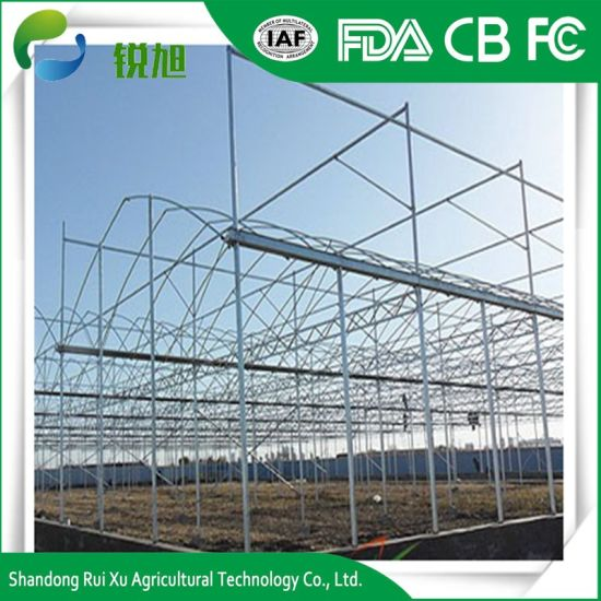 Venlo Type Polycarbonate Sheet Greenhouse pictures & photos