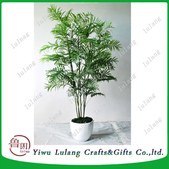 Artificial Bamboo Kwai Decorative Kwai Tree Plant Wholesale pictures & photos
