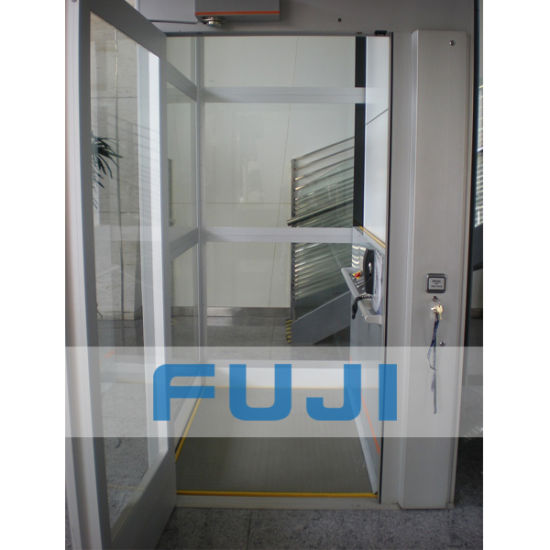 Fuji 320kg small home glass elevator lift price in china for Small elevator for home price