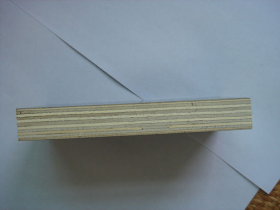 WBP Construction Plywood with Poplar Core (ISO9001) pictures & photos
