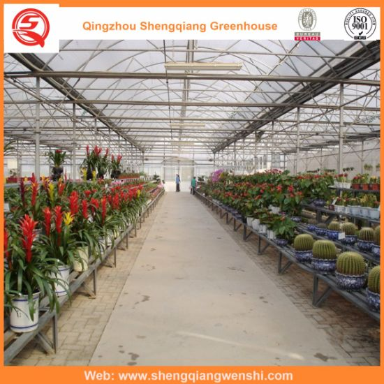 Multi-Span PC Sheet Garden Greenhouse for Sale with Covering Film