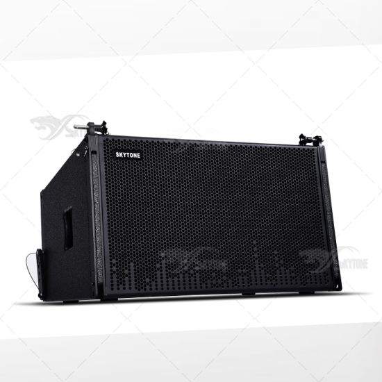 12′′ Vera 12 Passive Audio System Line Array Speaker pictures & photos