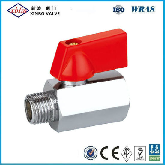 Fxm Brass Mini Ball Valve with with ABS Handle pictures & photos