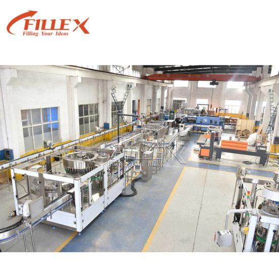 Assembly Line Conveyor Belt for Bottled Water