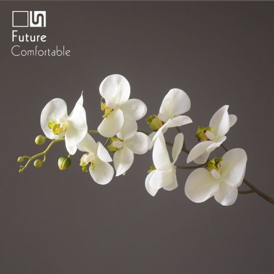 China butterfly orchid artificial flower artificial white flower butterfly orchid artificial flower artificial white flower white butterfly fower for home decoration real touch 8 heads butterfly orchid mightylinksfo