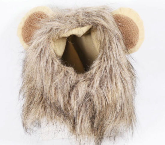Pet Lion Mane Wig Funny Cat Kitty Little Puppy Costume - Adorable Pet Hat Halloween Costume Party Hat Pictorial Hat Esg12528 pictures & photos