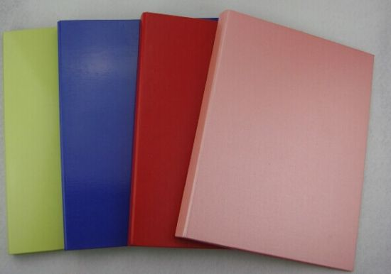 Paper Clear Book/Display Book-20/40/60/80/100 Pages