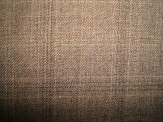 100% Wool Hidden Yarn Dyed Check Fabric pictures & photos