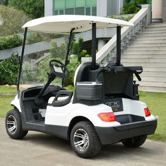 Small 2 Seaters Golf Car pictures & photos