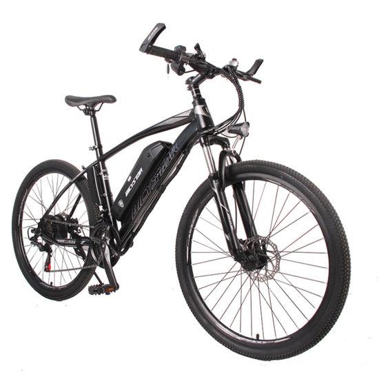 Electric Bike Electric Beach Cruiser Bicycle Electric Electric Bicycle 350W 1000W MID Drive 750W Bicycle